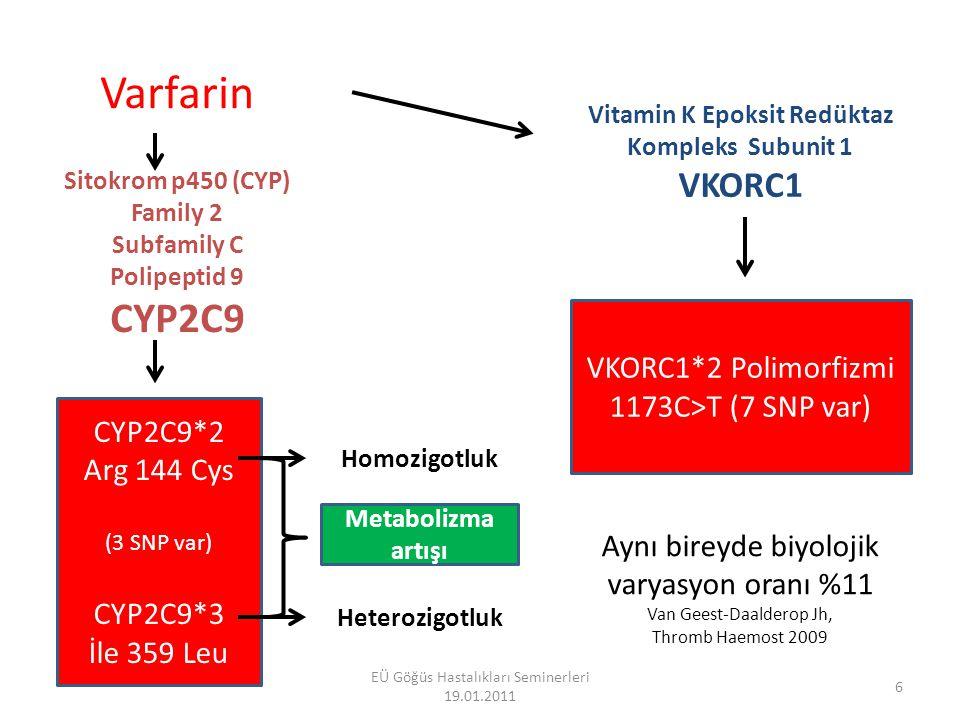 Vitamin K Epoksit Redüktaz Kompleks Subunit 1