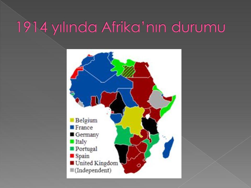 1914 yılında Afrika'nın durumu