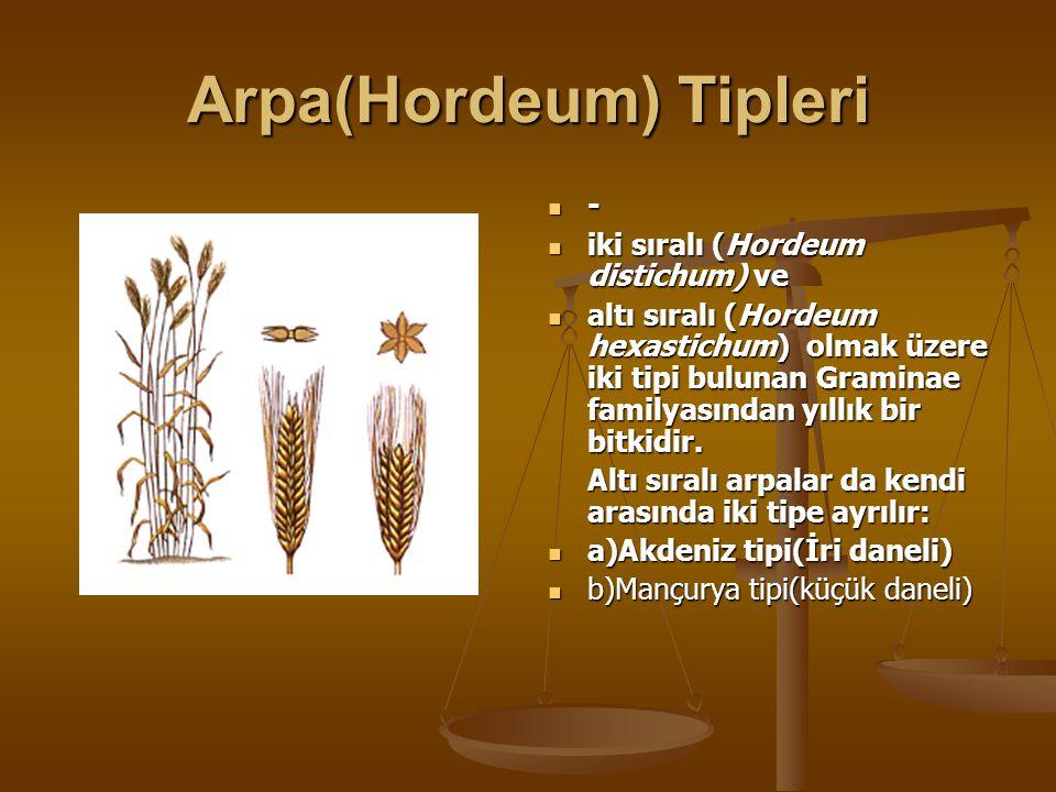 Arpa(Hordeum) Tipleri