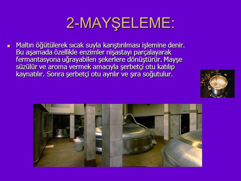 2-MAYŞELEME: