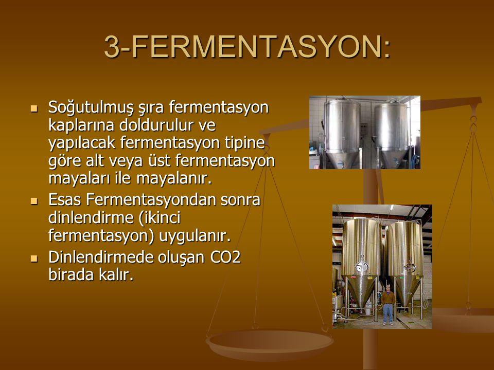 3-FERMENTASYON: