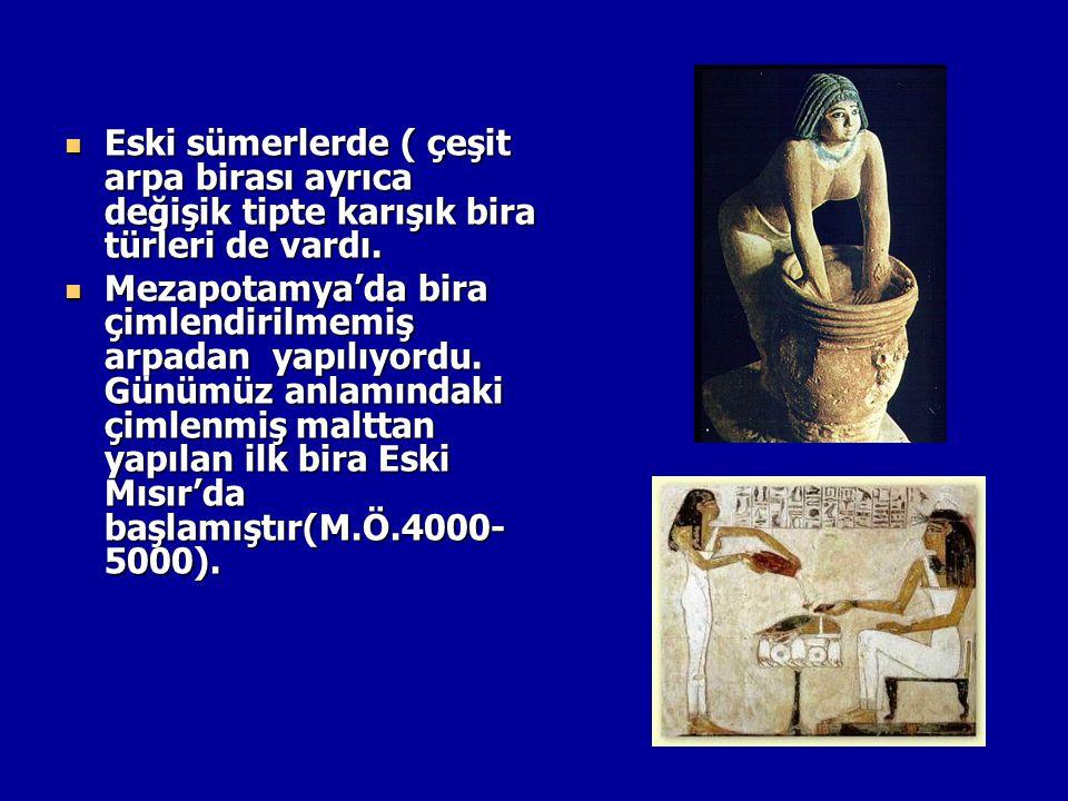 Eski sümerlerde ( çeşit arpa birası ayrıca değişik tipte karışık bira türleri de vardı.