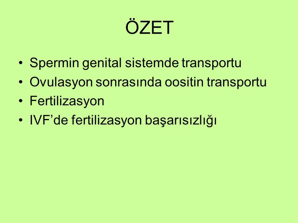ÖZET Spermin genital sistemde transportu