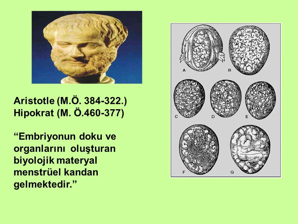 Aristotle (M.Ö. 384-322.) Hipokrat (M. Ö.460-377) Embriyonun doku ve organlarını oluşturan biyolojik materyal.