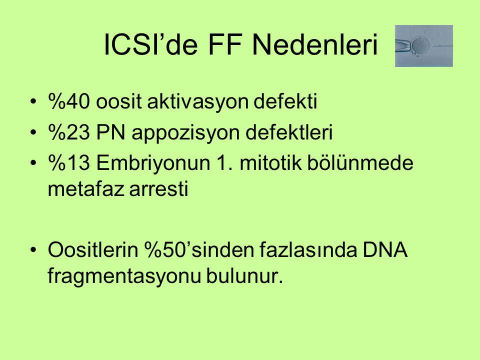 ICSI'de FF Nedenleri %40 oosit aktivasyon defekti