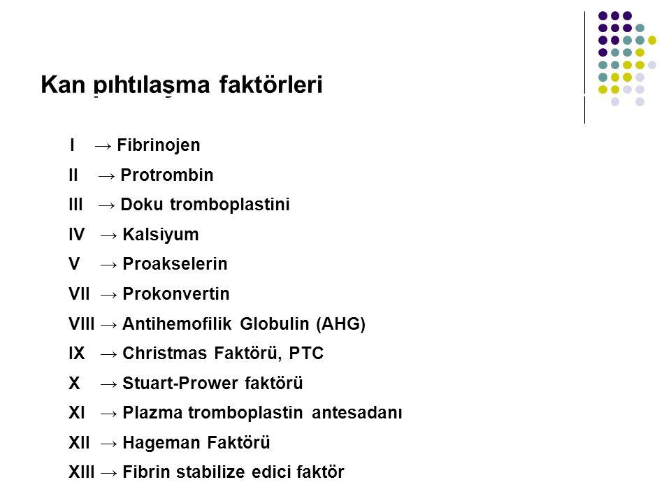 Kan pıhtılaşma faktörleri