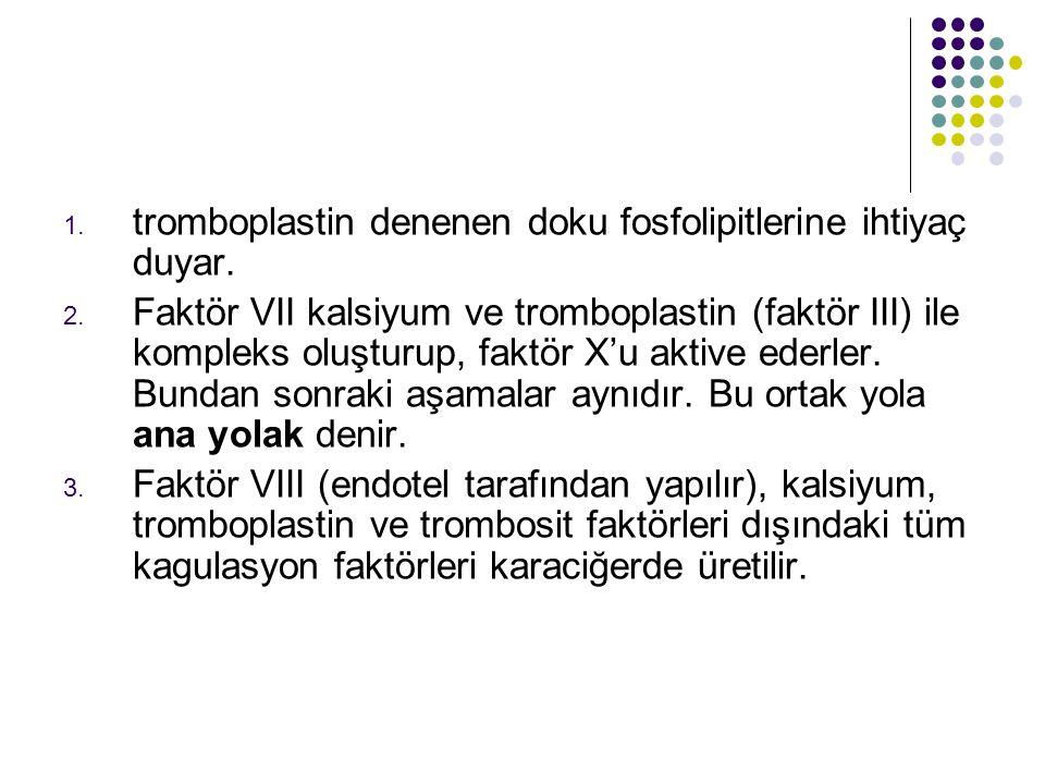 tromboplastin denenen doku fosfolipitlerine ihtiyaç duyar.