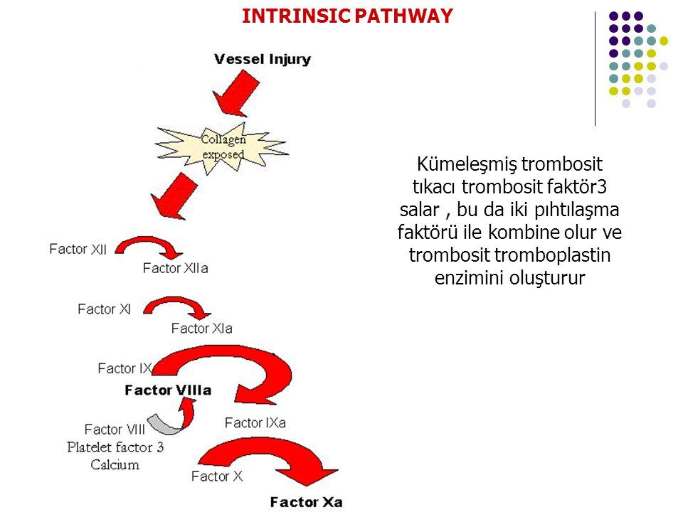INTRINSIC PATHWAY