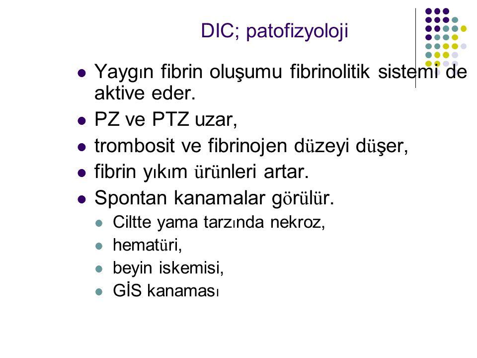 Yaygın fibrin oluşumu fibrinolitik sistemi de aktive eder.