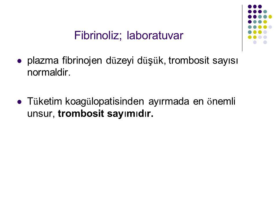 Fibrinoliz; laboratuvar