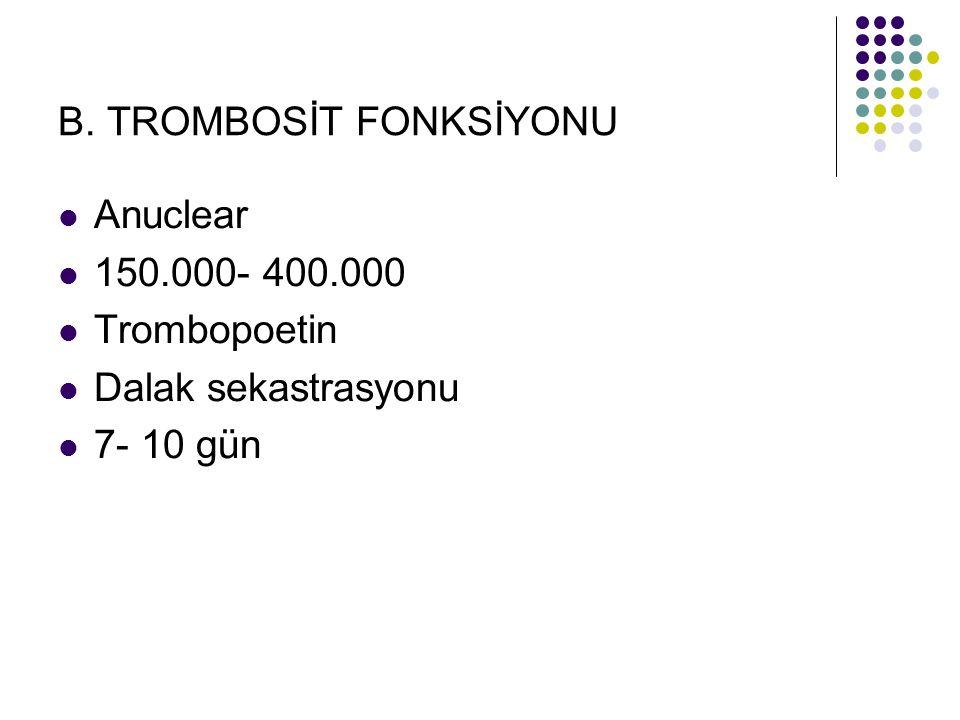 B. TROMBOSİT FONKSİYONU