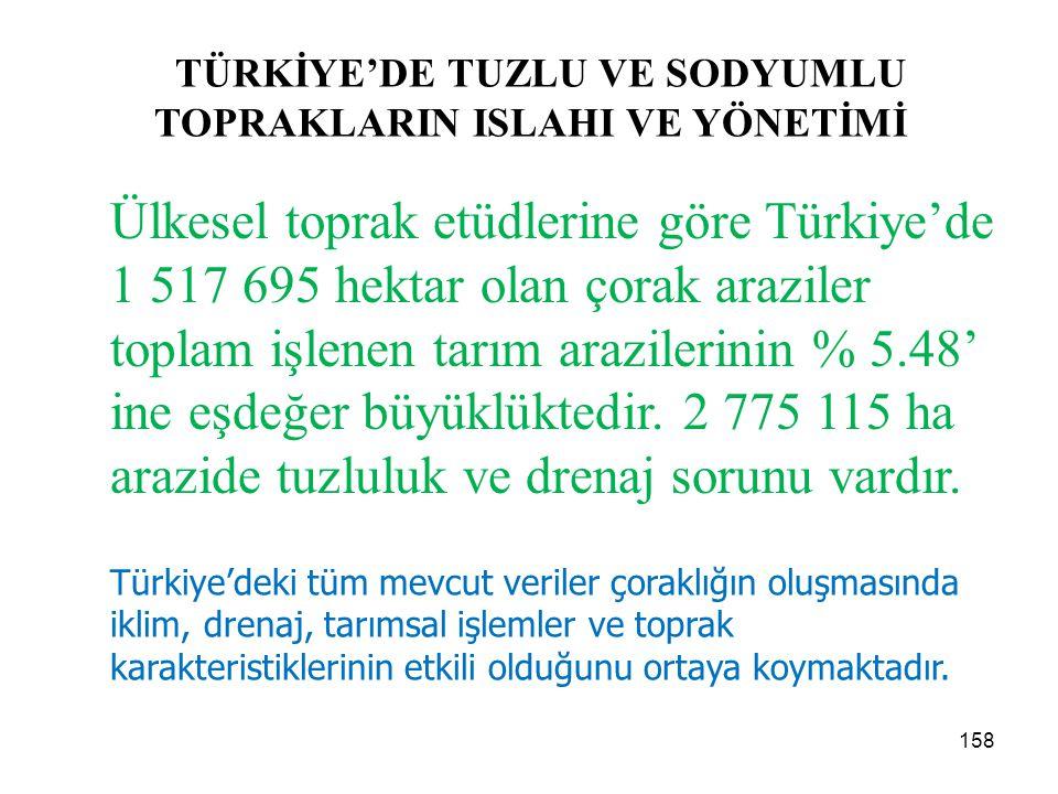 TÜRKİYE'DE TUZLU VE SODYUMLU TOPRAKLARIN ISLAHI VE YÖNETİMİ