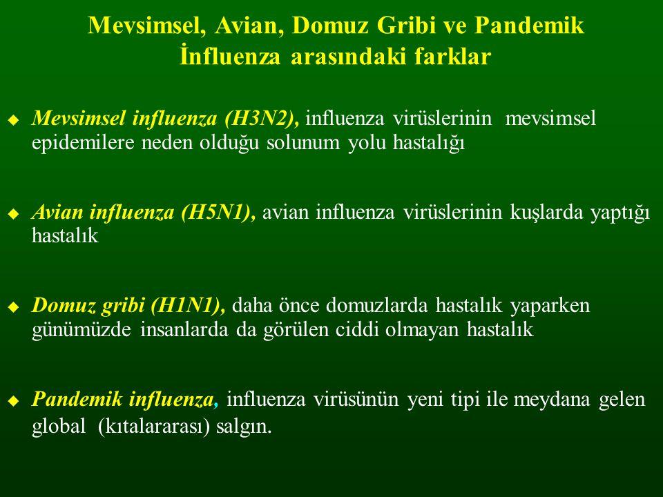 Mevsimsel, Avian, Domuz Gribi ve Pandemik İnfluenza arasındaki farklar