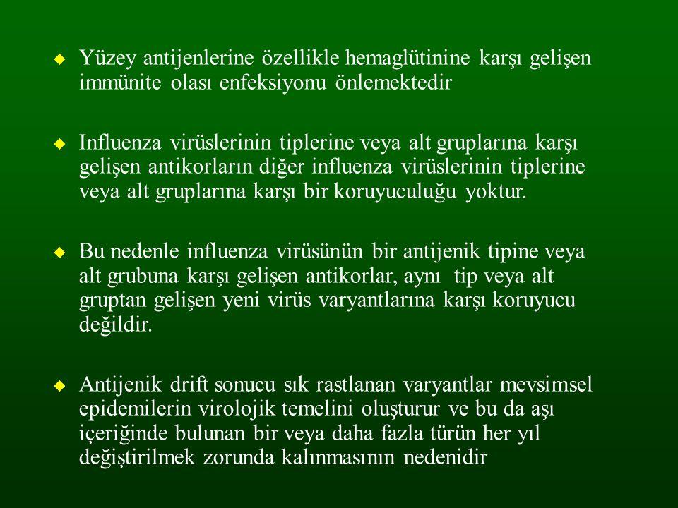 Yüzey antijenlerine özellikle hemaglütinine karşı gelişen immünite olası enfeksiyonu önlemektedir