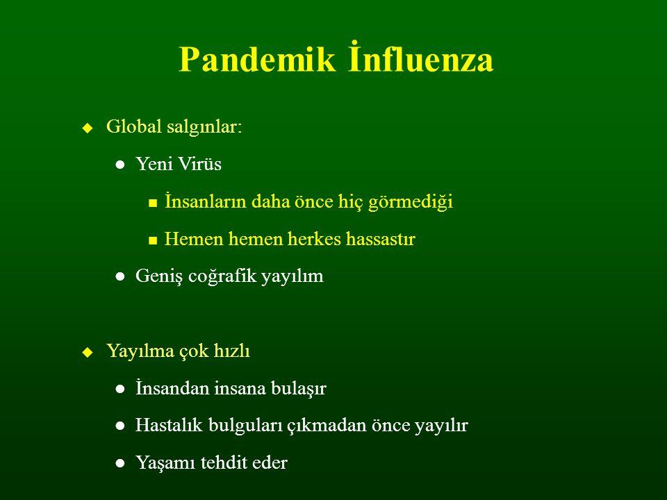 Pandemik İnfluenza Global salgınlar: Yeni Virüs. İnsanların daha önce hiç görmediği. Hemen hemen herkes hassastır.