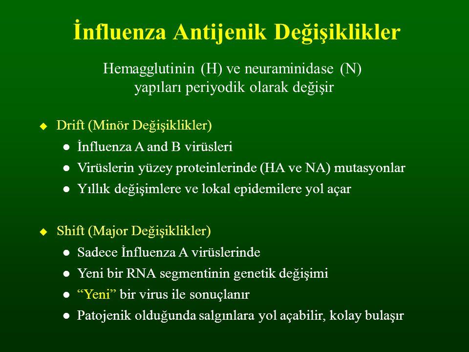 İnfluenza Antijenik Değişiklikler