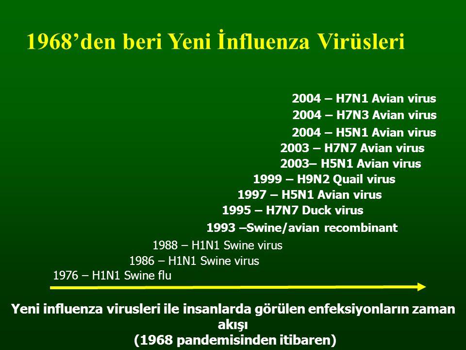 (1968 pandemisinden itibaren)