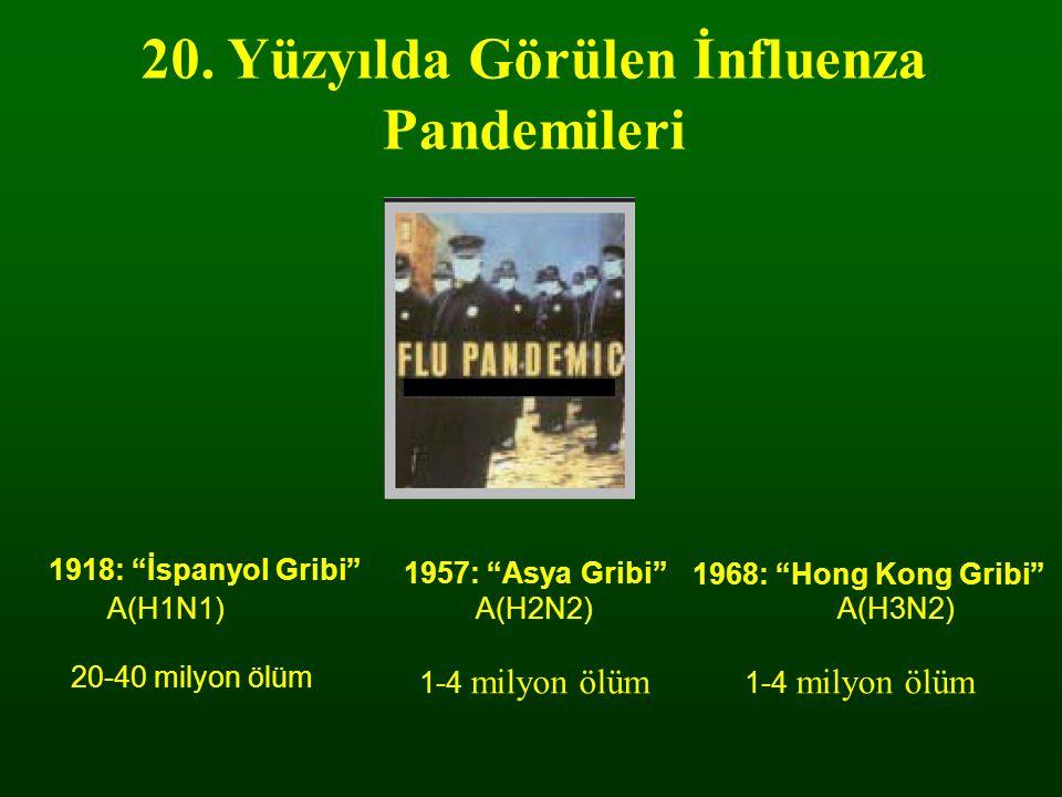 20. Yüzyılda Görülen İnfluenza Pandemileri