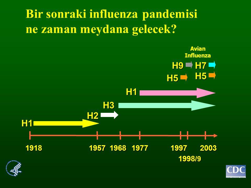 Bir sonraki influenza pandemisi ne zaman meydana gelecek