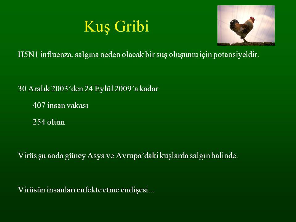 Kuş Gribi H5N1 influenza, salgına neden olacak bir suş oluşumu için potansiyeldir. 30 Aralık 2003'den 24 Eylül 2009'a kadar.