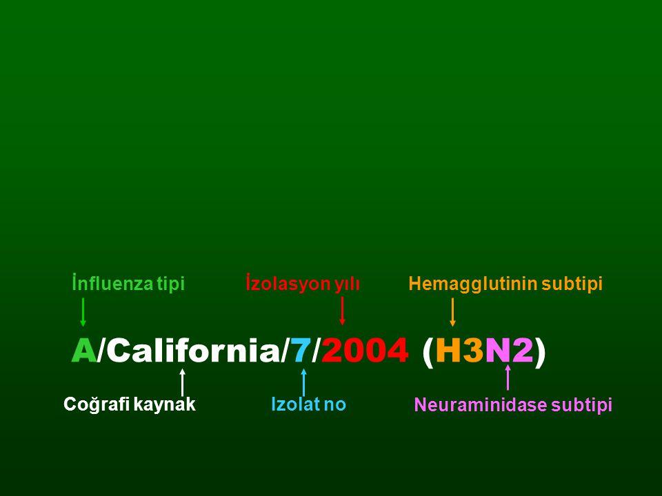 Hemagglutinin subtipi Neuraminidase subtipi