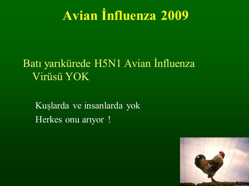 Avian İnfluenza 2009 Batı yarıkürede H5N1 Avian İnfluenza Virüsü YOK