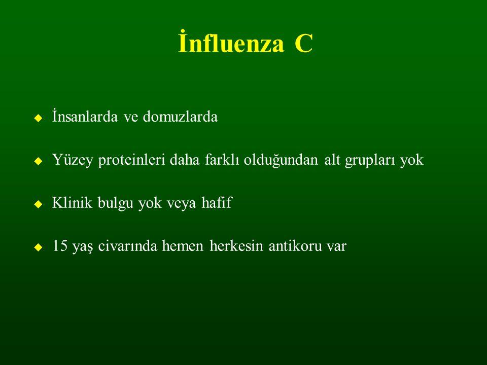 İnfluenza C İnsanlarda ve domuzlarda. Yüzey proteinleri daha farklı olduğundan alt grupları yok. Klinik bulgu yok veya hafif.