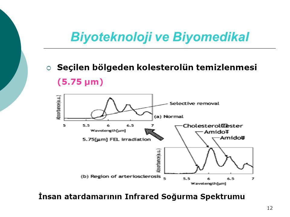 Biyoteknoloji ve Biyomedikal