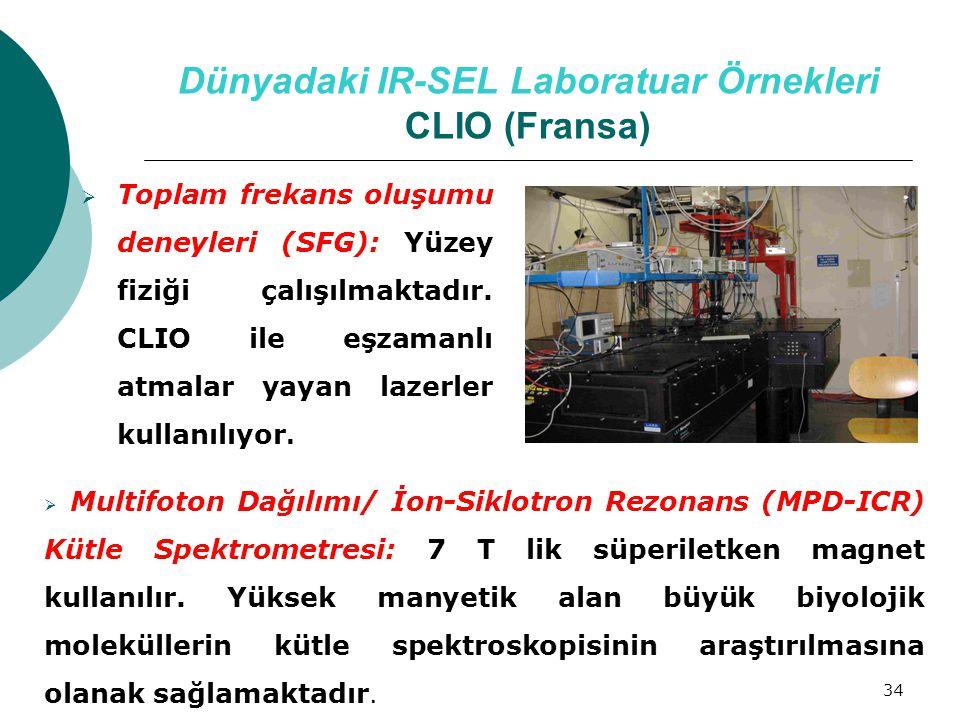Dünyadaki IR-SEL Laboratuar Örnekleri CLIO (Fransa)