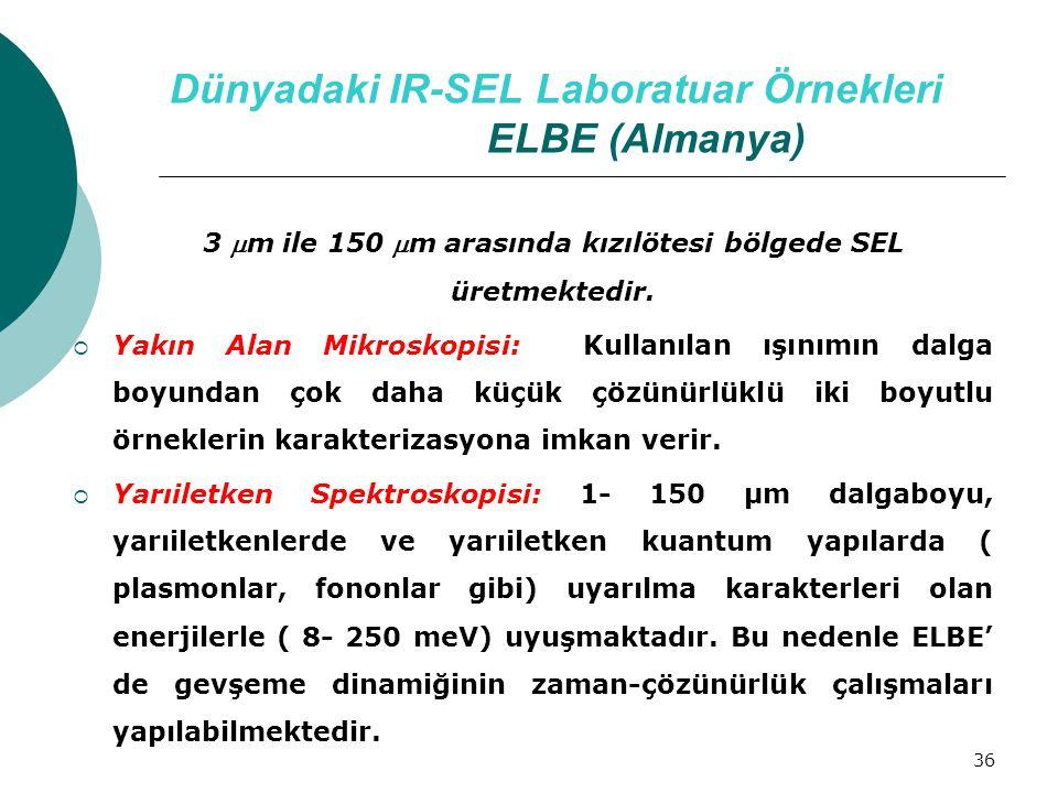 Dünyadaki IR-SEL Laboratuar Örnekleri ELBE (Almanya)
