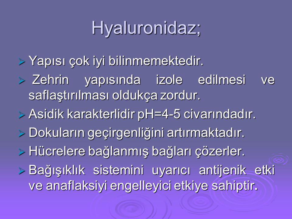 Hyaluronidaz; Yapısı çok iyi bilinmemektedir.
