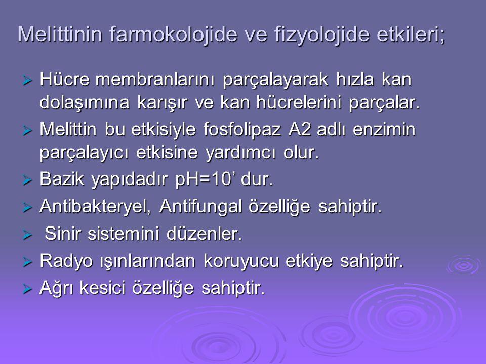 Melittinin farmokolojide ve fizyolojide etkileri;