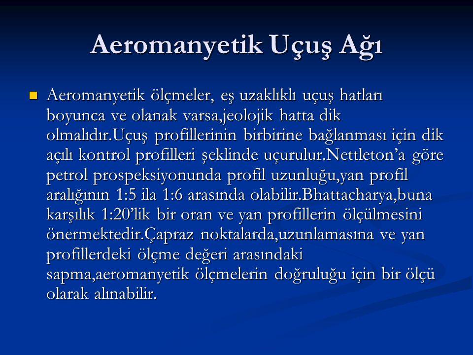 Aeromanyetik Uçuş Ağı