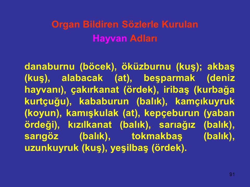 Organ Bildiren Sözlerle Kurulan