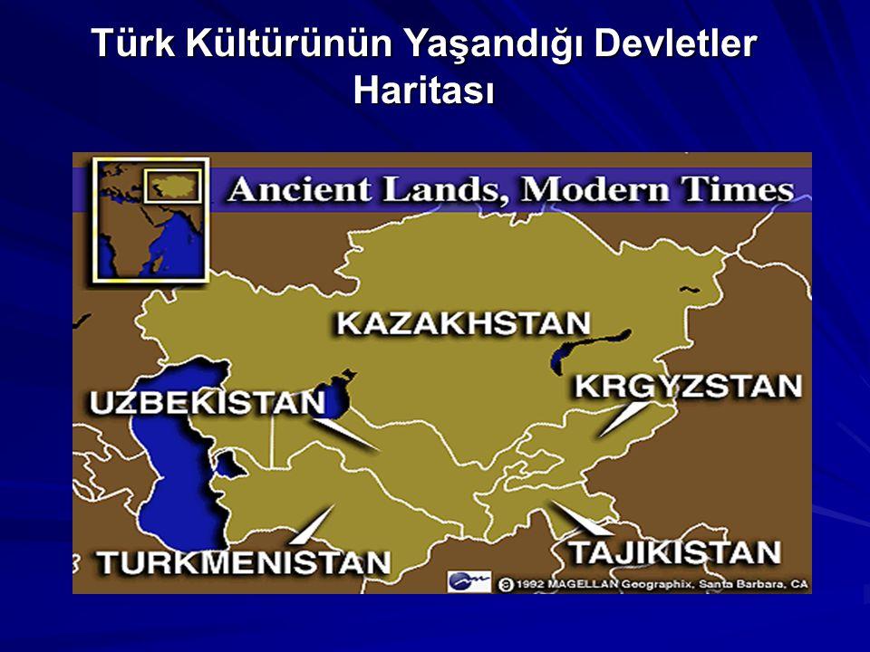 Türk Kültürünün Yaşandığı Devletler Haritası