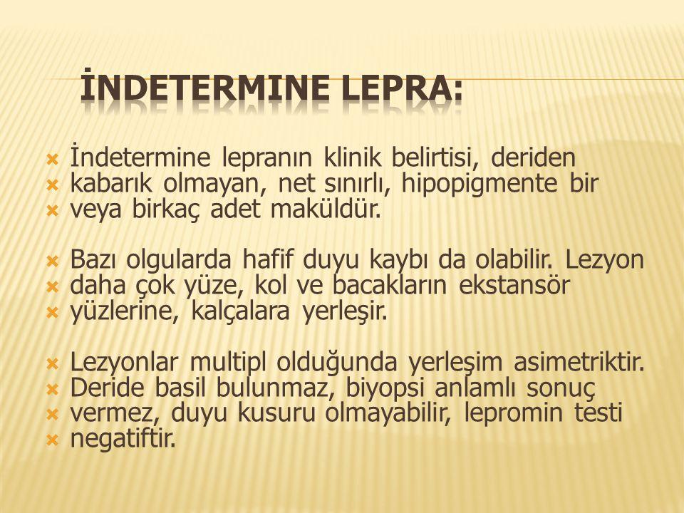 İndetermine lepra: İndetermine lepranın klinik belirtisi, deriden