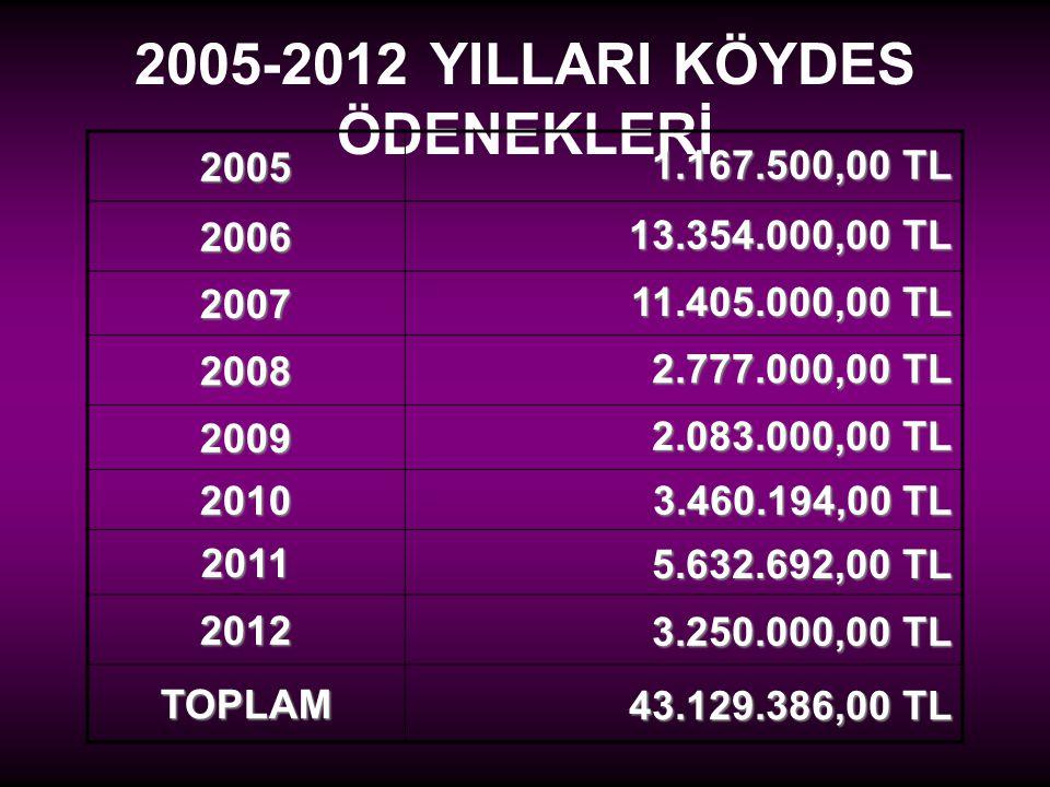 2005-2012 YILLARI KÖYDES ÖDENEKLERİ