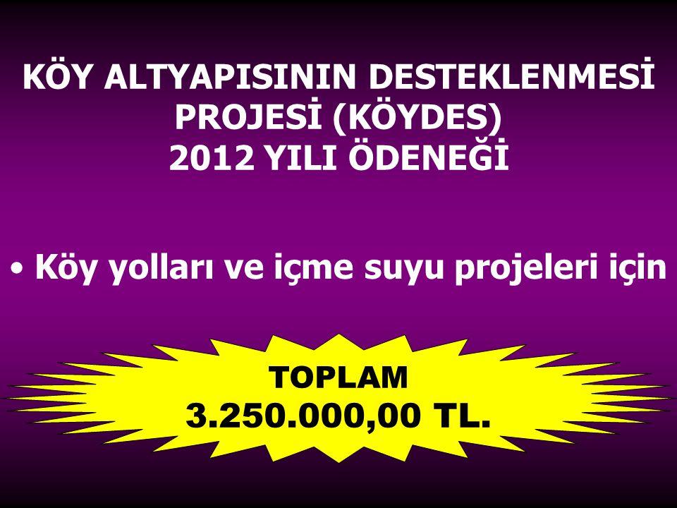 KÖY ALTYAPISININ DESTEKLENMESİ PROJESİ (KÖYDES) 2012 YILI ÖDENEĞİ