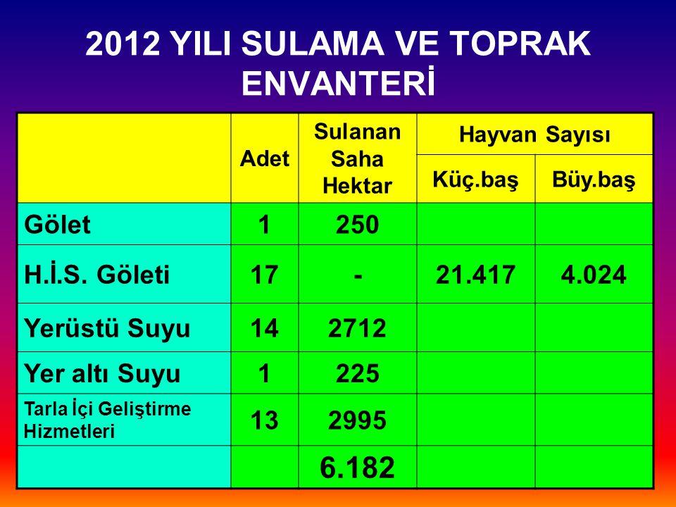 2012 YILI SULAMA VE TOPRAK ENVANTERİ