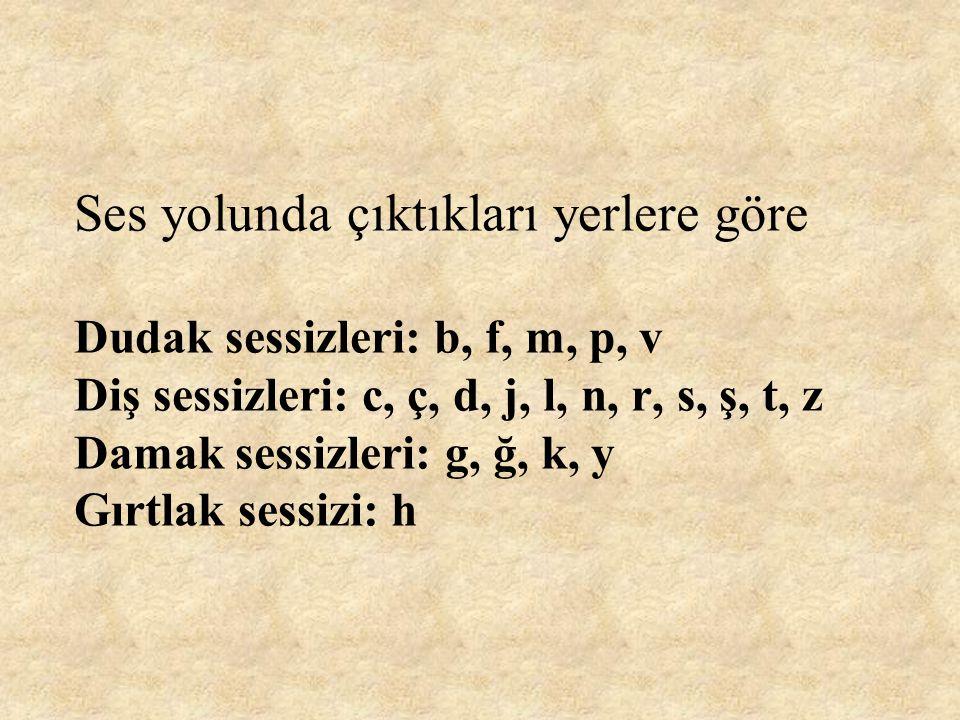 Ses yolunda çıktıkları yerlere göre Dudak sessizleri: b, f, m, p, v Diş sessizleri: c, ç, d, j, l, n, r, s, ş, t, z Damak sessizleri: g, ğ, k, y Gırtlak sessizi: h