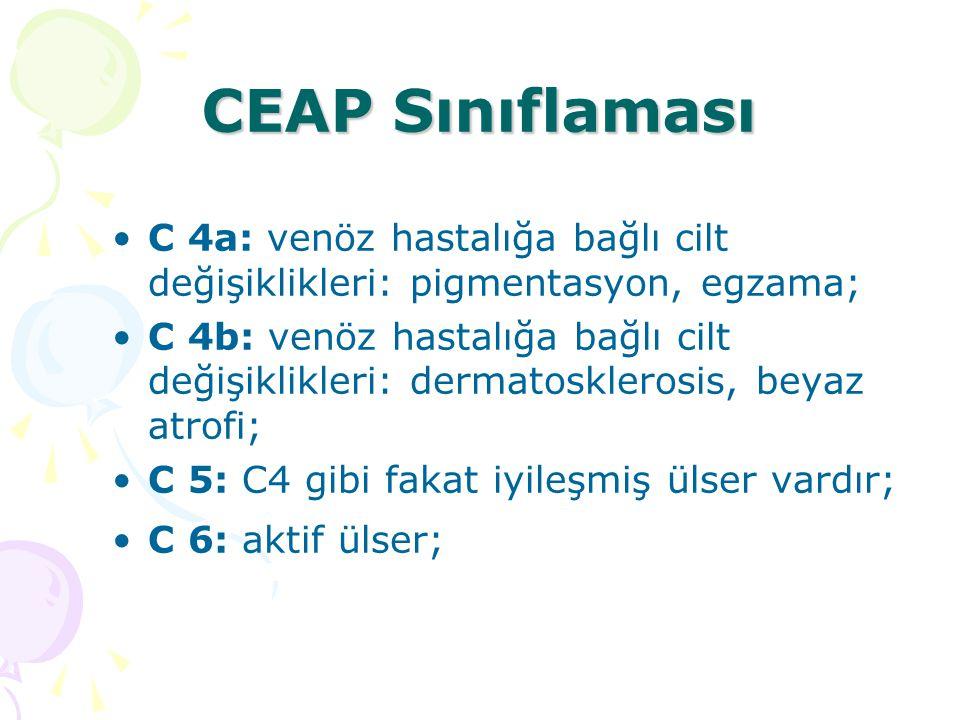 CEAP Sınıflaması C 4a: venöz hastalığa bağlı cilt değişiklikleri: pigmentasyon, egzama;