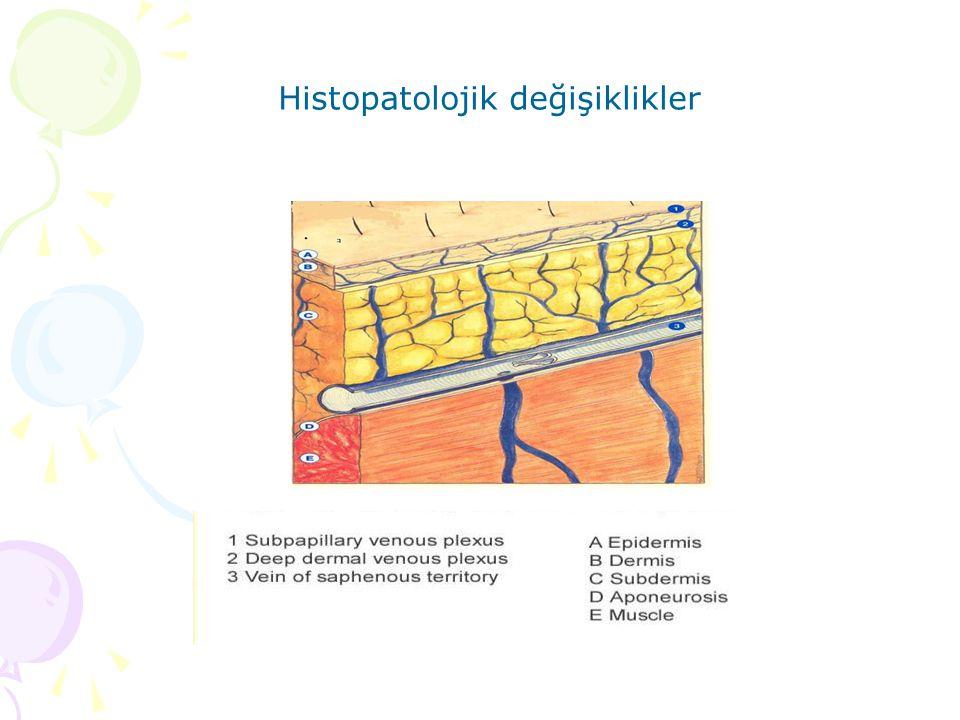 Histopatolojik değişiklikler
