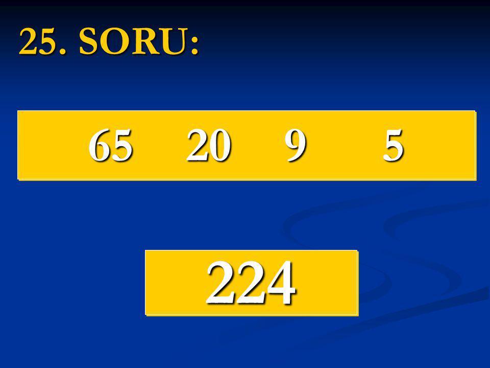 25. SORU: 65 20 9 5 224