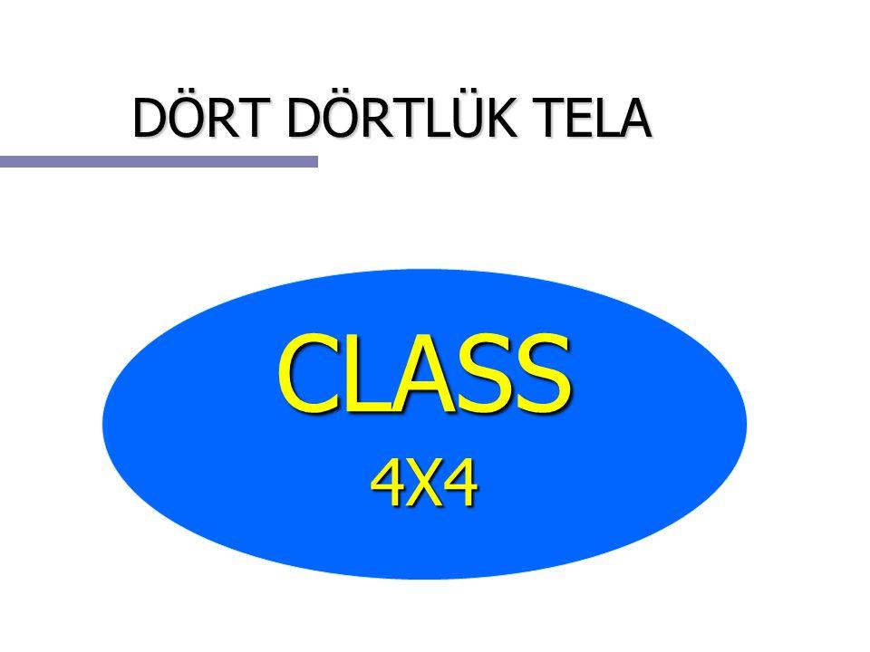 DÖRT DÖRTLÜK TELA CLASS 4X4