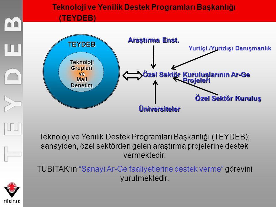 Teknoloji ve Yenilik Destek Programları Başkanlığı (TEYDEB)