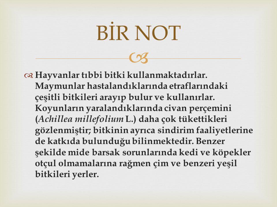BİR NOT