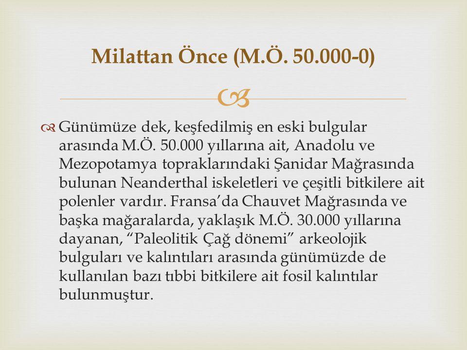 Milattan Önce (M.Ö. 50.000-0)