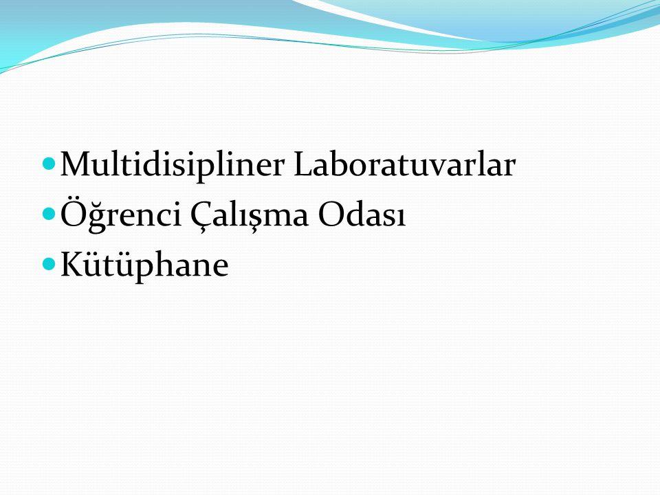 Multidisipliner Laboratuvarlar