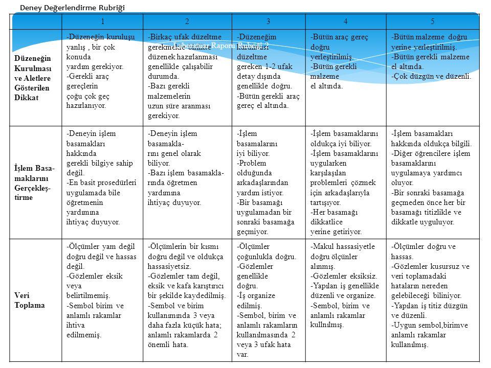 Laboratuar Raporu Rubriği 2