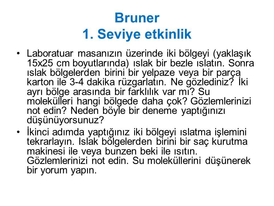 Bruner 1. Seviye etkinlik